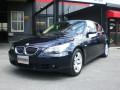BMW525i-20090328
